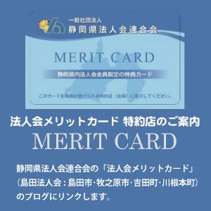 meritcard_info_2017